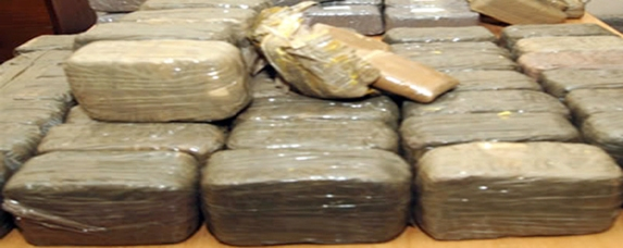 حجز حوالي 8800 كيلو من المخدرات