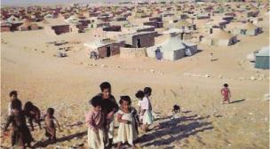 حجز حوالي 6 أطنان من الأرز المهرب من مخيمات تندوف.