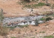 المكتب الوطني للماء سبب كارثة بيئية بنواحي كلميم.
