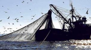 رسميا الاتحاد الأوروبي يعلن إعتماد إتفاقية الصيد البحري مع المغرب بصفة نهائية