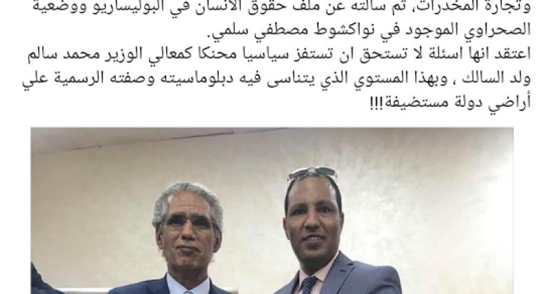 أحد قيادي جبهة البوليساريو يتهم مراسل قناة الميادين بالعمالة للمغرب.