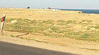 الخرسانة تزحف على خليج وادي الذهب و الوضع البيئي في خطر.