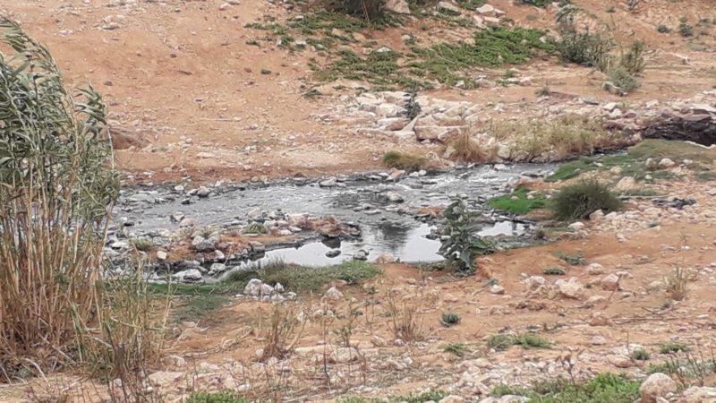 """الكارثة البيئية بدواوير تابعة لكميم و محلها من رسالة وزيرة الداخلة و وباء """"كورونا"""""""