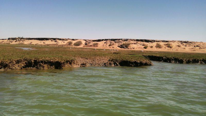 محمية أنعيلة تناشد مصالح المياه و الغابات